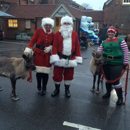 real-reindeer-hire